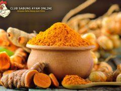 Khasiat Dan Manfaat Kunyit Untuk Ayam Bangkok Aduan